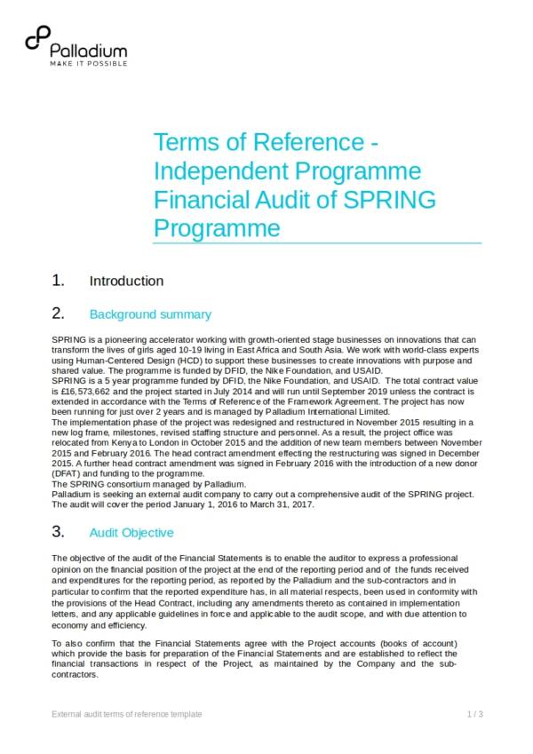 external audit terms of reference ttemplate