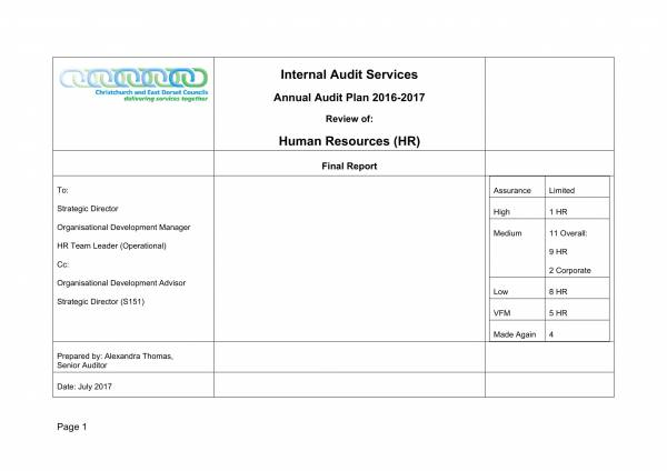 hr annual audit report template 01