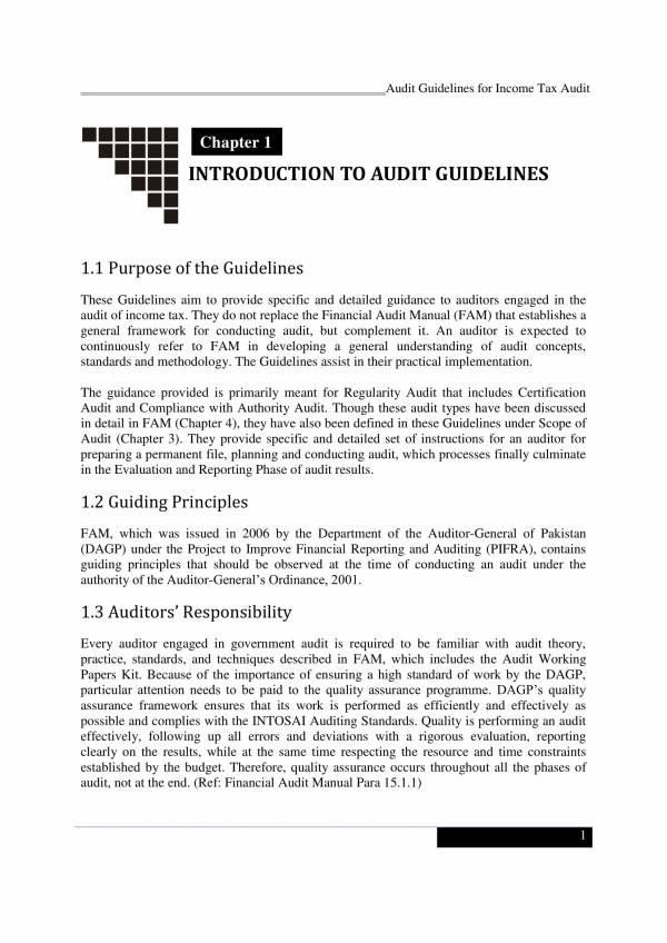 income tax audit guidelines 015