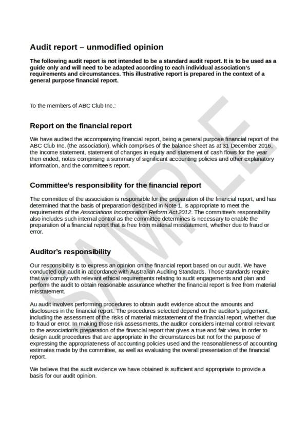 incorporated associations sample audit report