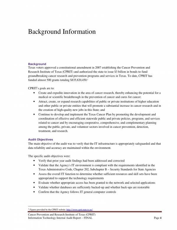 information technology internal audit report 04
