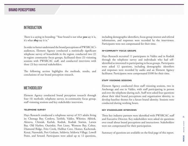 brand audit needs assessment report 21