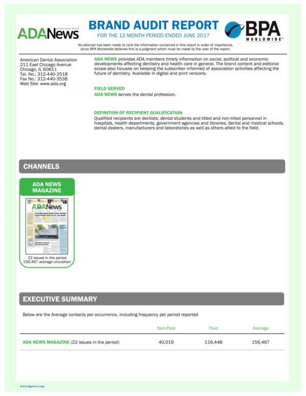 brand audit report sample 1