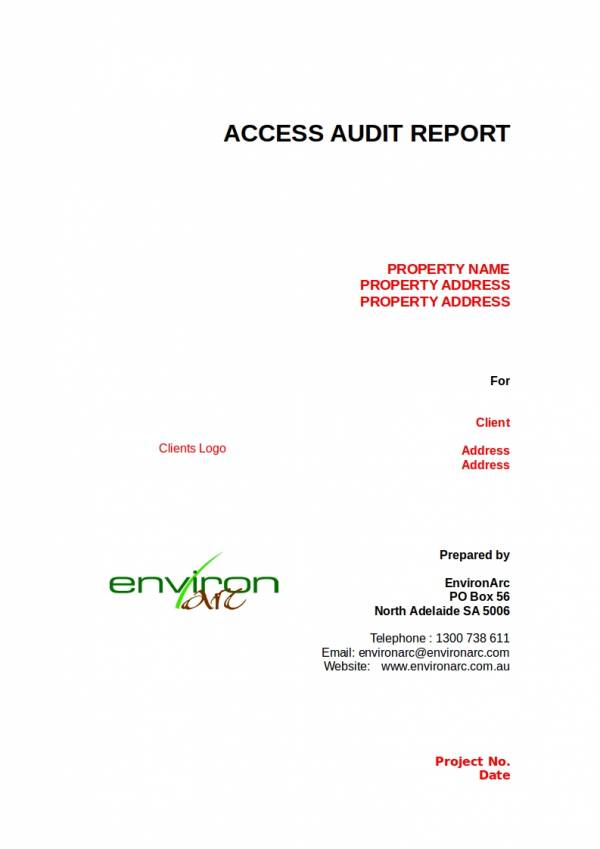 editable access audit report