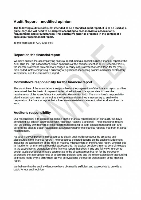 sample financial audit report with modified opinion