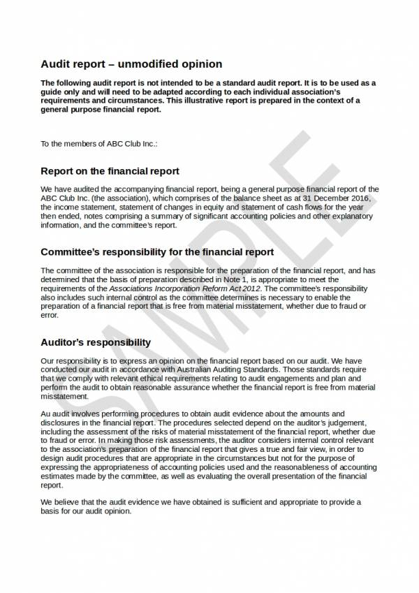 sample financial audit report with unmodified opinion