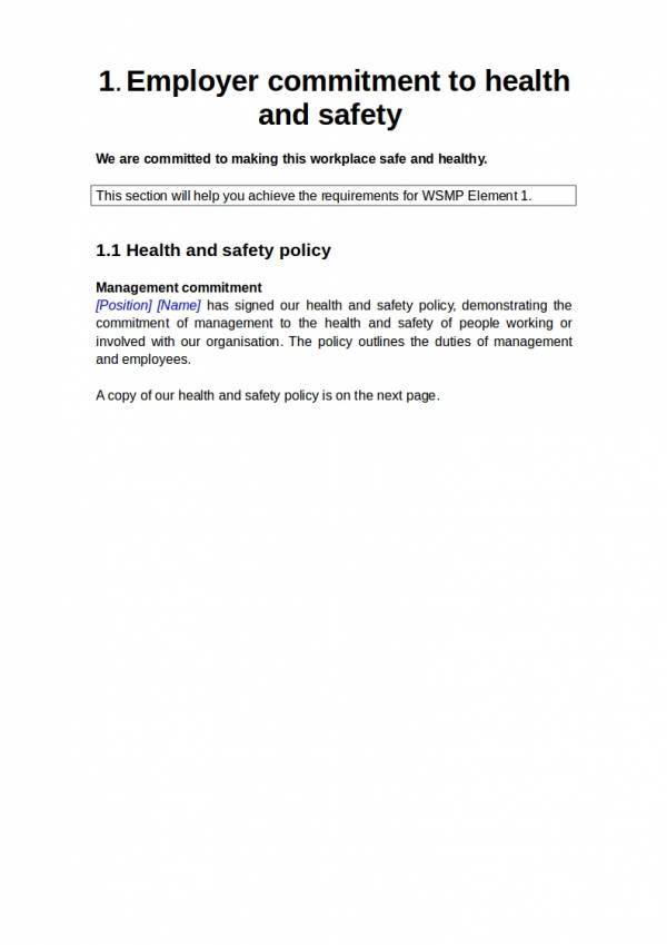 health and safety management plan template