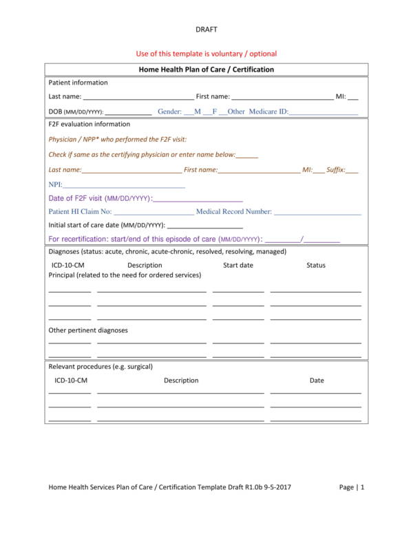 home patient care plan template 2