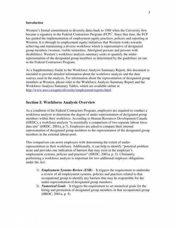 workforce analysis summary 03