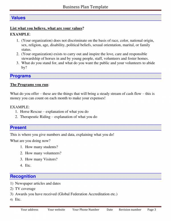 detailed business plan template 03