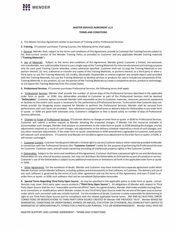 detailed master services agreement 1