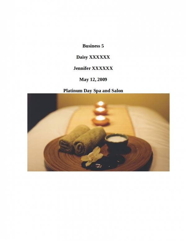 editable massage and spa business plan template
