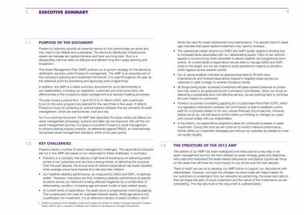 electricity asset management plan 005