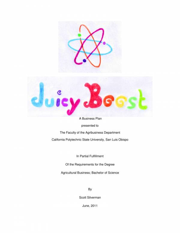 juicy boost business plan sample 01