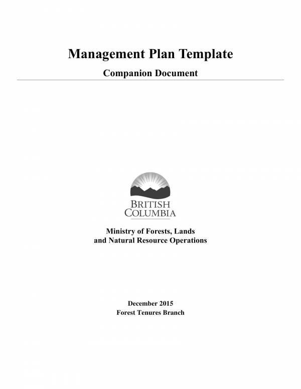 operations management plan sample template 1