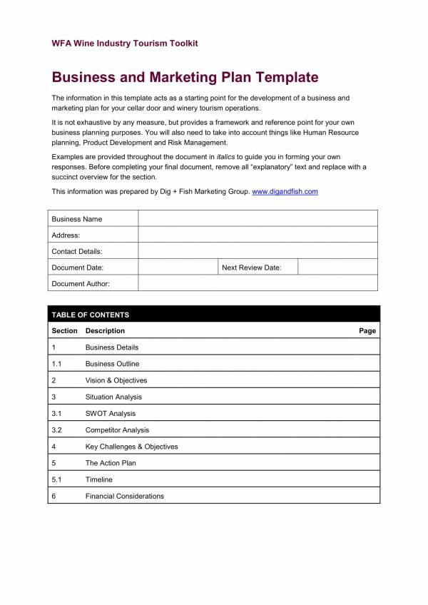 business and marketing plan template 01