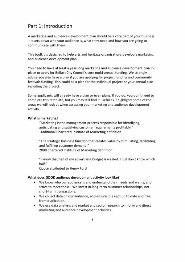 cultural events marketing plan template 03