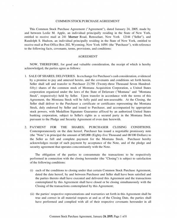 common stock purchase agreement sample template 1