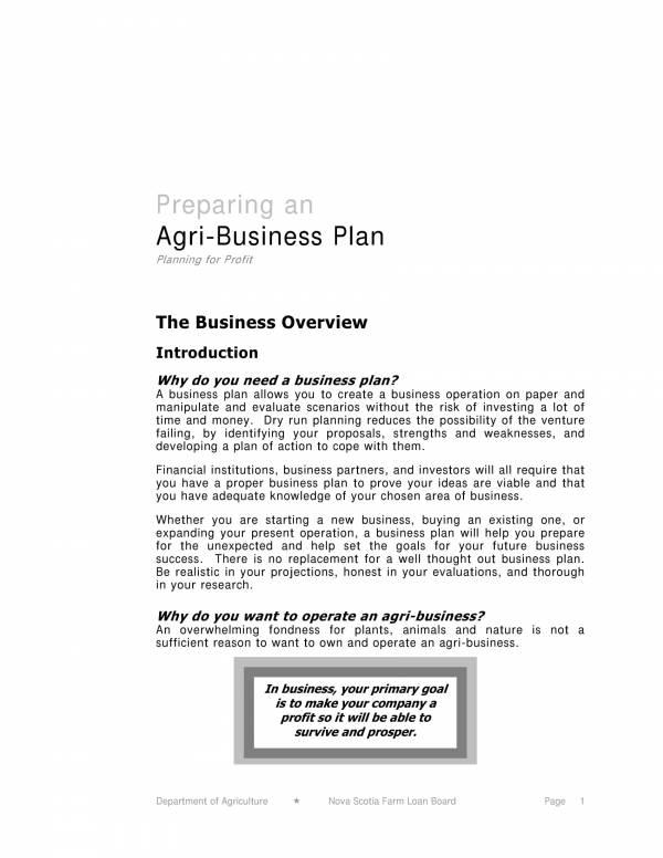 agri business plan sample 03