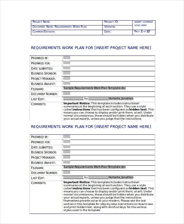 requirements work plan template