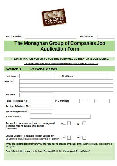 employment application form sample template