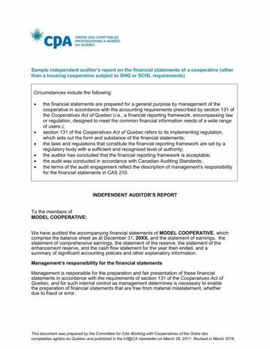 independent auditor's report on financial statements