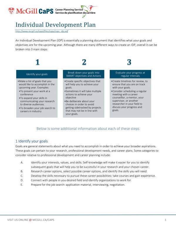 individual performance development plan template 1