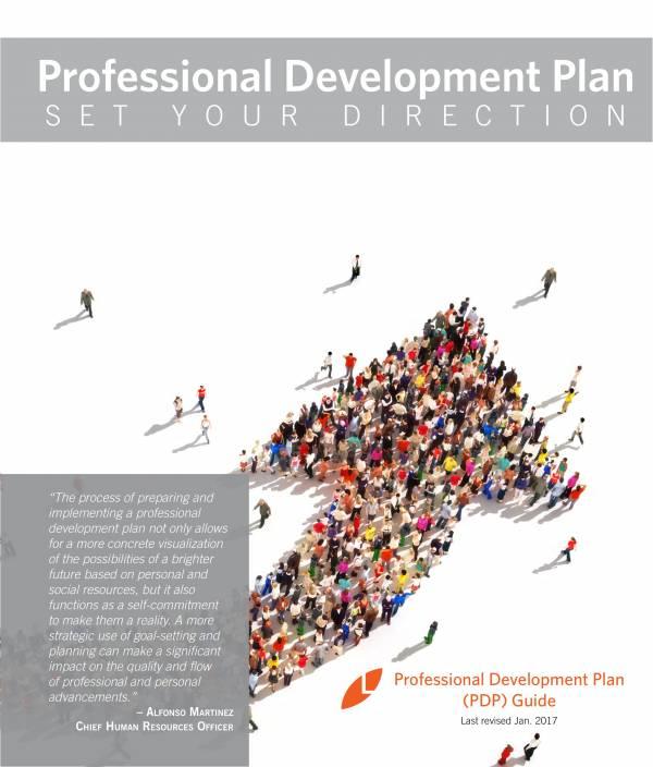 professional performance development plan sample 01