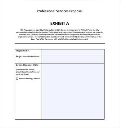 professional service proposal template
