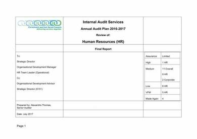 hr annual audit report template