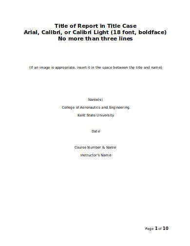blank technical report template