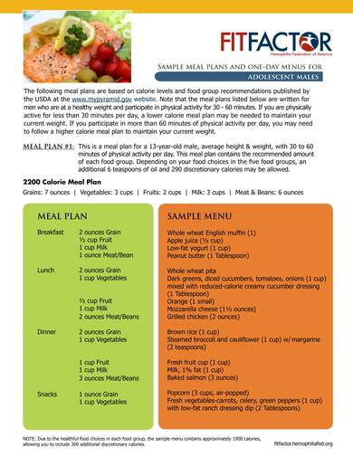 daily meal plan sample