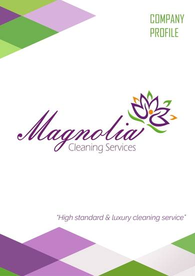 luxury cleaning service company profile