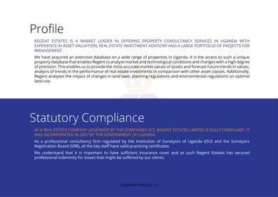 professional real estate solution provider company profile