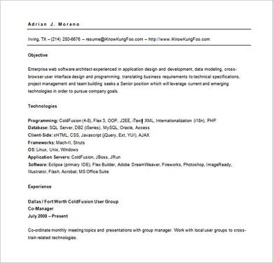 professional web developer application and resume template 1