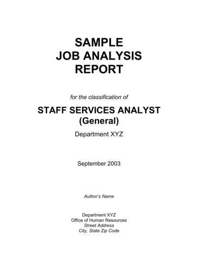 sample job analysis report 02