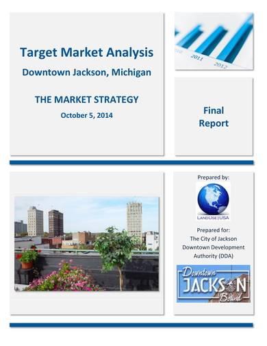 sample target market analysis report