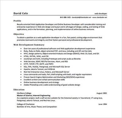 sample web developer resume template 1