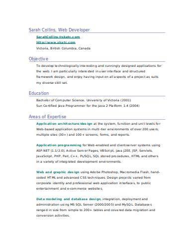 simple web developer resume sample
