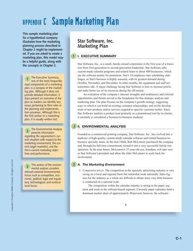 software marketing plan sample