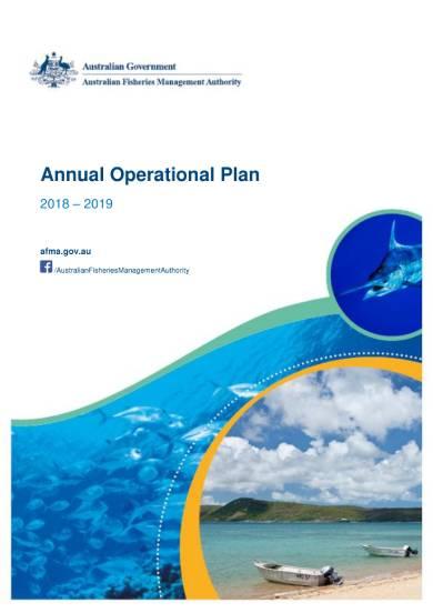 annual operational plan sample