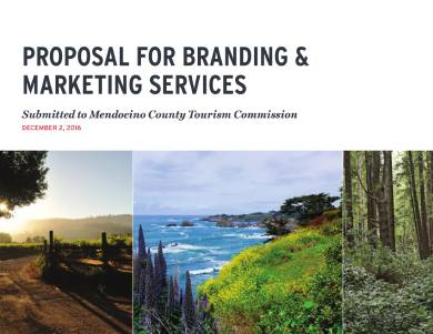 branding and marketing service proposal