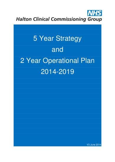 two year operational plan sample
