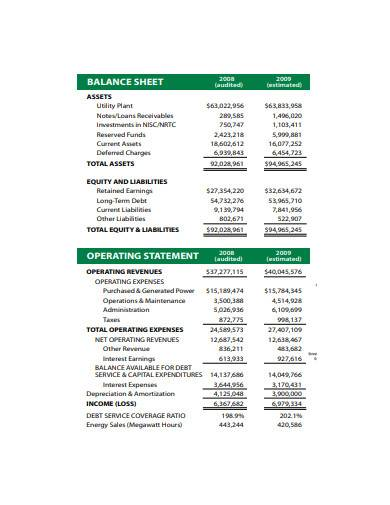 balance sheet and operating statement