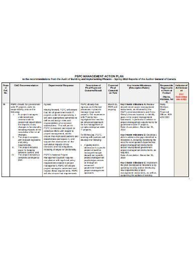basic management action plan sample