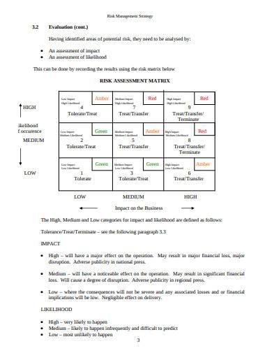 basic risk management strategy