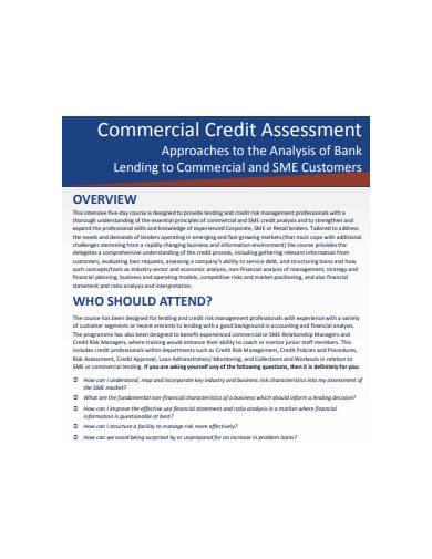 commercial credit assessment sample
