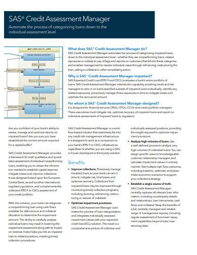 credit assessment manager sample1