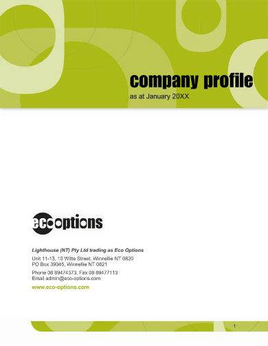 detailed company profile sample with green design