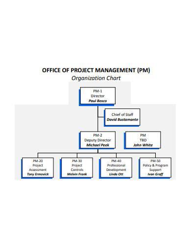 management organisation chart sample